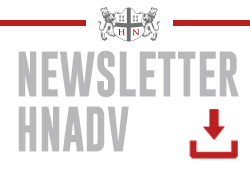 Newsletter | Helder Nascimento Advogados