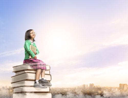 REGULAMENTAÇÃO DO FUNDEB – FUNDO DE MANUTENÇÃO E DESENVOLVIMENTO DA EDUCAÇÃO BÁSICA E DE VALORIZAÇÃO DOS PROFISSIONAIS DA EDUCAÇÃO
